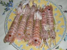 plato de galeras fritas - Pesca-turismo