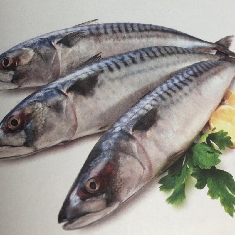 2857bf7358 Guiso de caballa con verduras